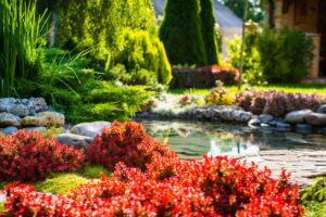 Landscaping design options with Landservices, INC